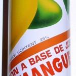 boisson-au-jus-de-mangue-cock-250ml[413]